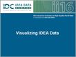 Visualizing IDEA Data