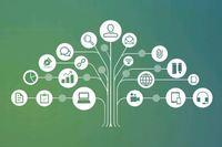 Part C IDEA 618 Data Processes Toolkit